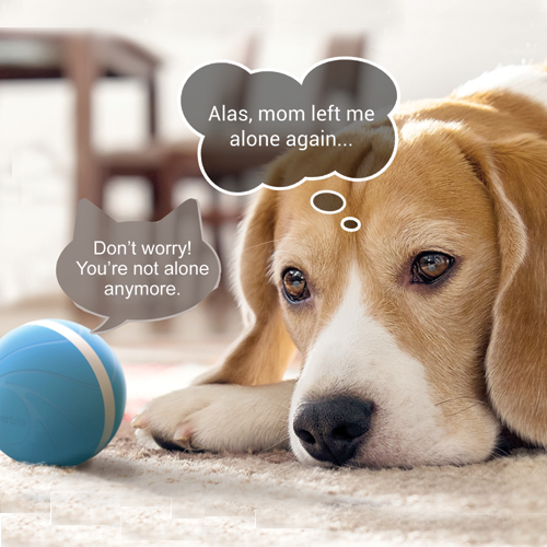 cheerable pet toy